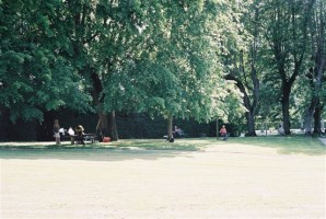 Artistes dans le parc